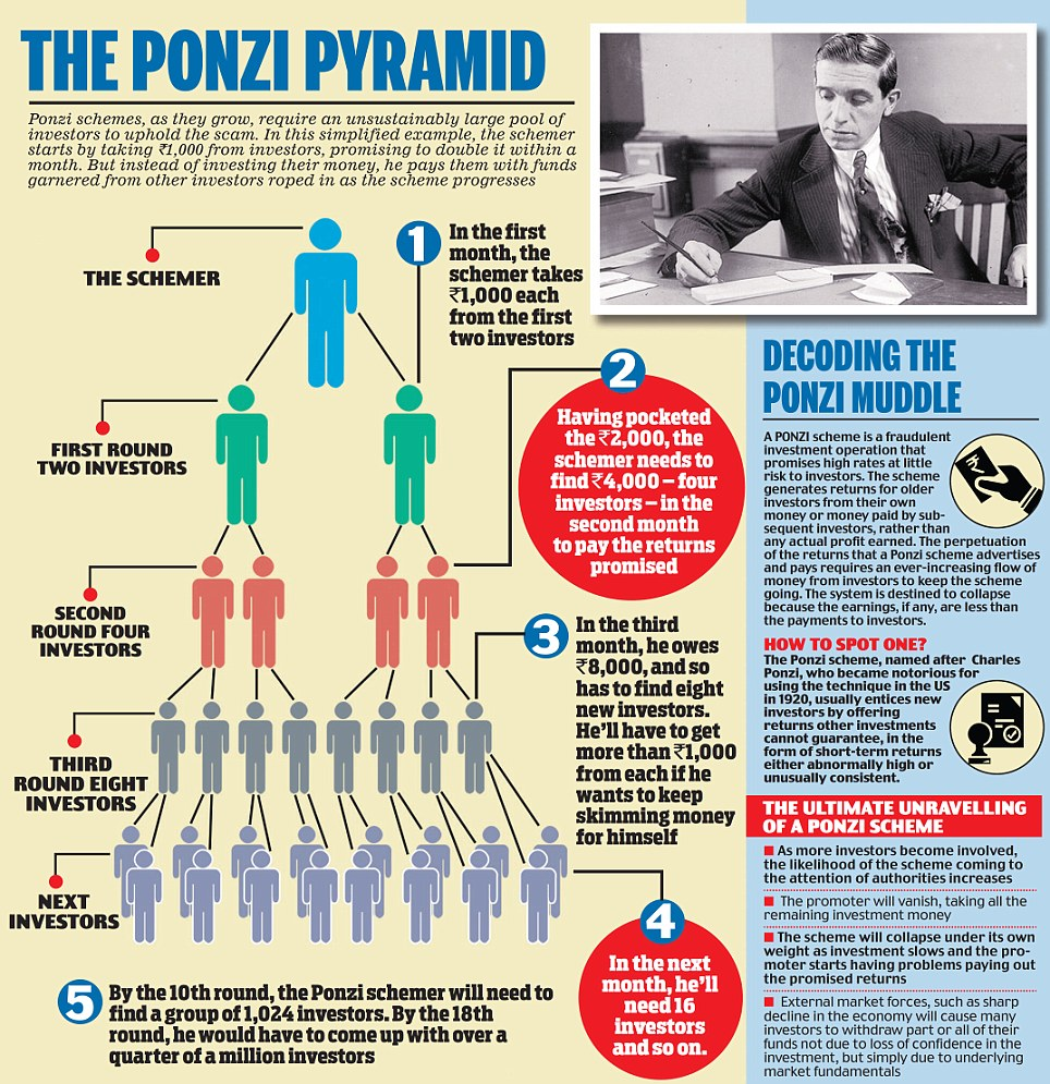 Ponzi Pyramid The Beginners Guide How Dividends