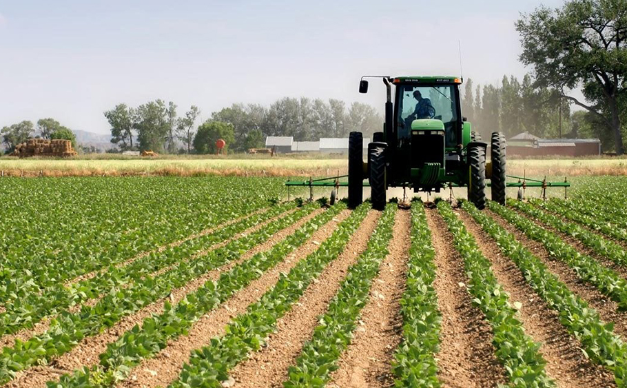 CBN to increase loans to agricultural sector to 10% of total bank credit, Agritech, Efficient Power: Addressing a Critical Element in Nigeria's Agro-Industrial Revolution