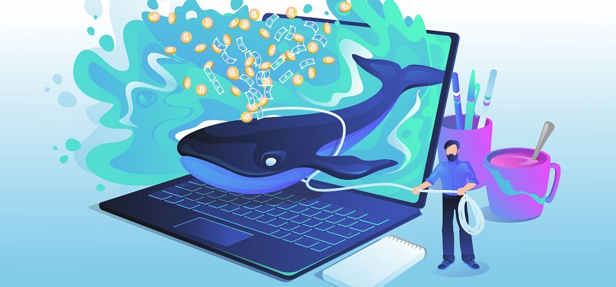 Bitcoin Whale transfers $1.1 billion worth of crypto for $3.58